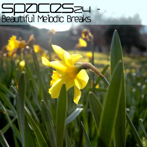spaces24